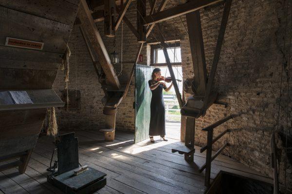 Hompesche molen Foto: Marco Borggreve via NMF