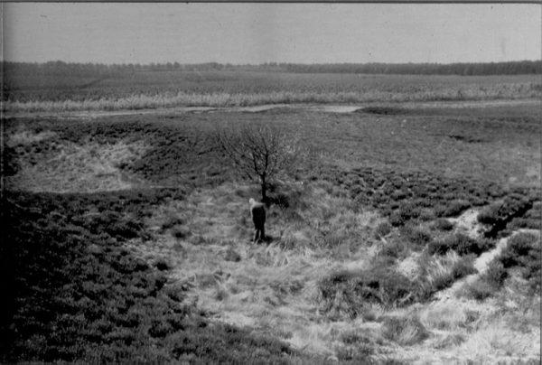 IJzerkuilen op de Asselsche Heide op de Veluwe met op de foto de Apeldoornse amateurarcheoloog Jaap Moerman