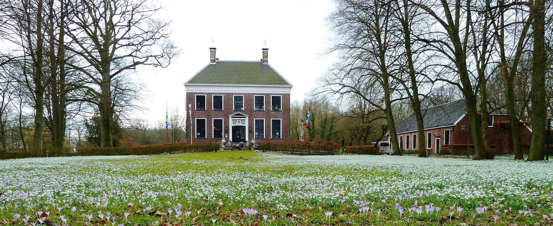 Stinsenplanten: bloeiend cultureel erfgoed