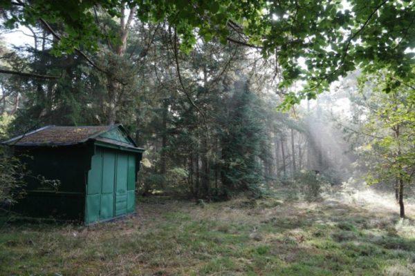 Het theehuisje in het bosgebied Noorderduinen bij Roderesch