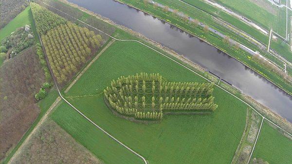 De Groene Kathedraal in Almere