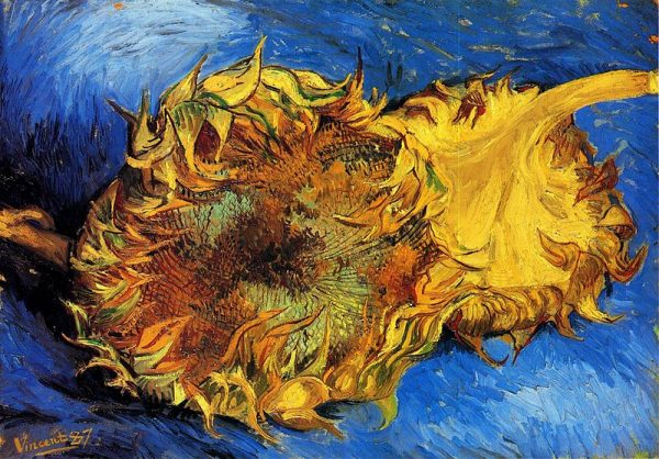 Twee afgesneden zonnebloemen, schilderij van Vincent van Gogh