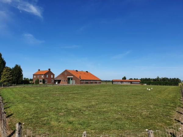 Een wederopbouwboerderij in het Land van Maas en Waal