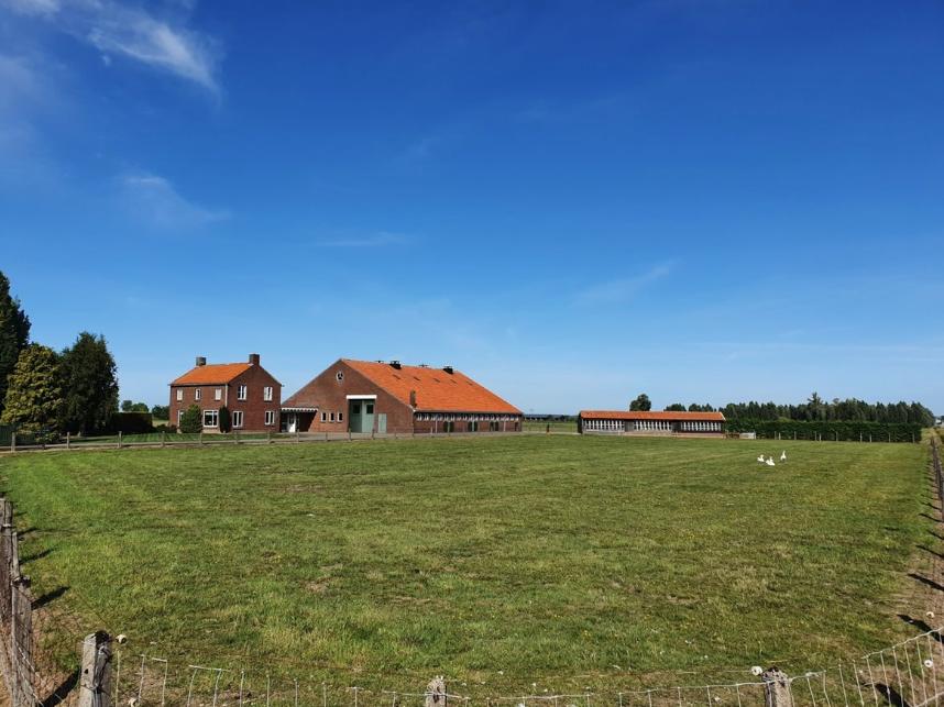 Heemschut vraagt aandacht voor wederopbouwboerderijen in Land van Maas en Waal