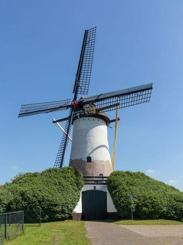Sint Antoniusmolen in Halsteren