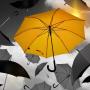 Alphen aan den Rijn gaat erfgoed beschermen met paraplubestemmingsplan