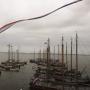 'Wijs bruine vloot aan als werelderfgoed'