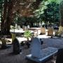 Laat de doden met rust: petitie voor behoud begraafplaats Naaldwijk