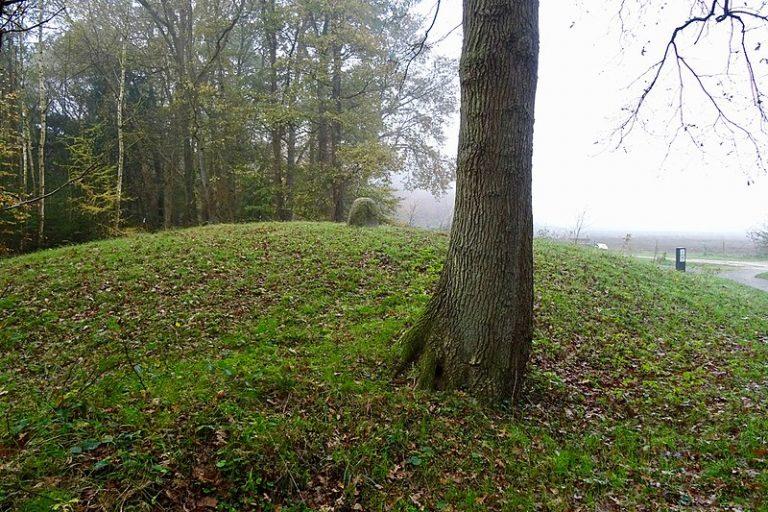 Strubben- Kniphorstbosch.