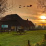 Karakteristieke (stolp)boerderijen in het waddengebied: Waddenfonds investeert in behoud agrarisch waddenerfgoed